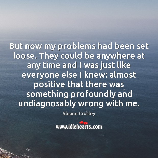 But now my problems had been set loose. They could be anywhere Sloane Crosley Picture Quote