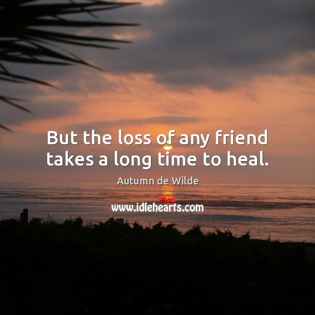 But the loss of any friend takes a long time to heal. Image