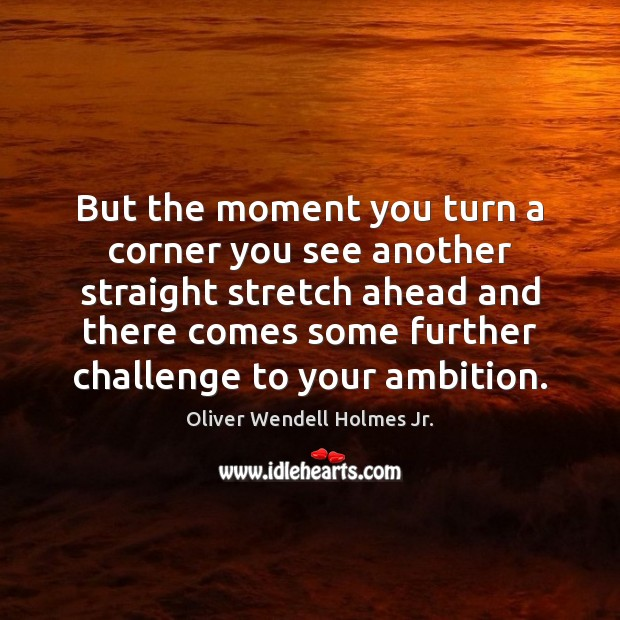 But the moment you turn a corner you see another straight stretch Oliver Wendell Holmes Jr. Picture Quote