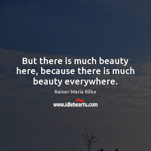 Image, But there is much beauty here, because there is much beauty everywhere.
