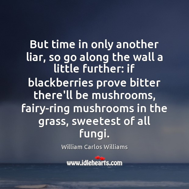 But time in only another liar, so go along the wall a William Carlos Williams Picture Quote