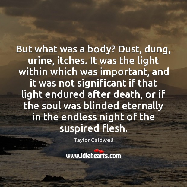 But what was a body? Dust, dung, urine, itches. It was the Image