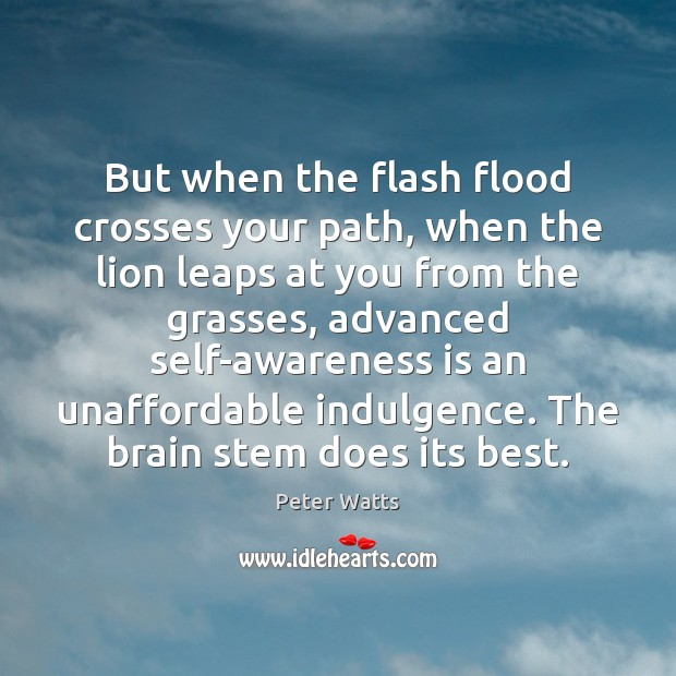 But when the flash flood crosses your path, when the lion leaps Peter Watts Picture Quote