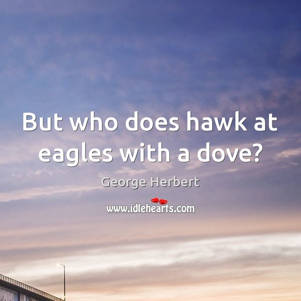 But who does hawk at eagles with a dove? George Herbert Picture Quote