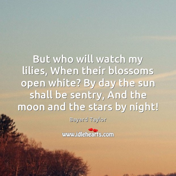 But who will watch my lilies, When their blossoms open white? By Bayard Taylor Picture Quote