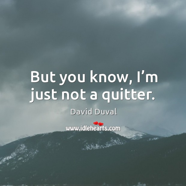 But you know, I'm just not a quitter. David Duval Picture Quote
