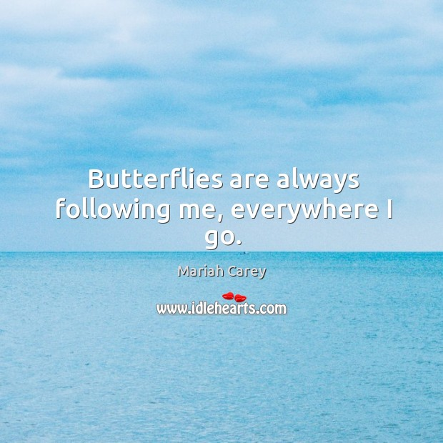 Butterflies are always following me, everywhere I go. Image