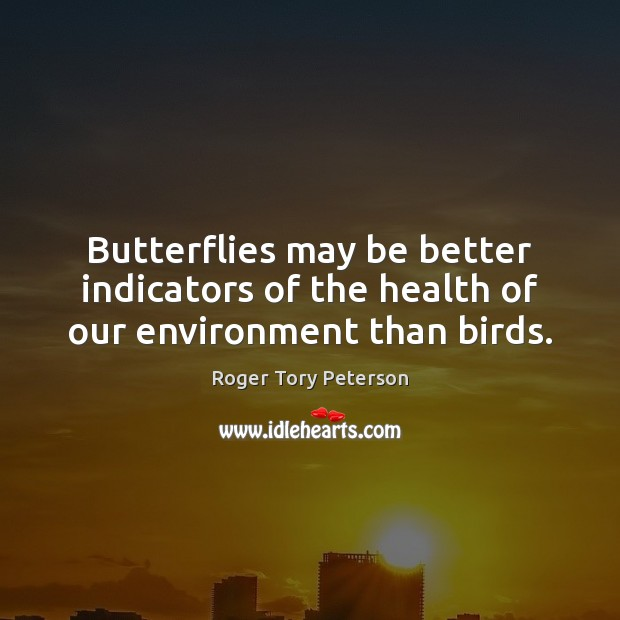 Butterflies may be better indicators of the health of our environment than birds. Environment Quotes Image