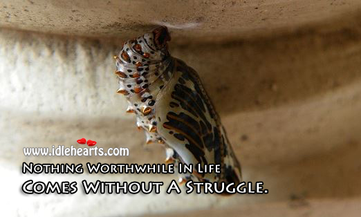 Image, Nothing worthwhile in life comes without a struggle.