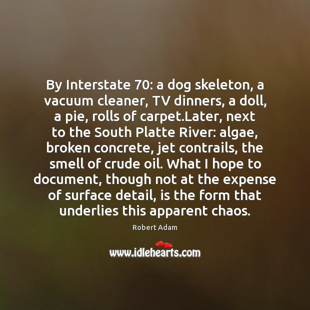 Image, By Interstate 70: a dog skeleton, a vacuum cleaner, TV dinners, a doll,