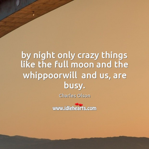 By night only crazy things like the full moon and the whippoorwill  and us, are busy. Image