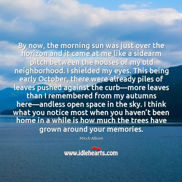 By now, the morning sun was just over the horizon and it Mitch Albom Picture Quote