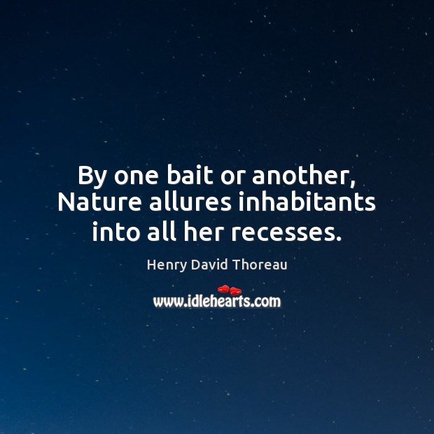 By one bait or another, Nature allures inhabitants into all her recesses. Image