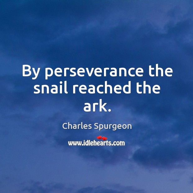 By perseverance the snail reached the ark. Image