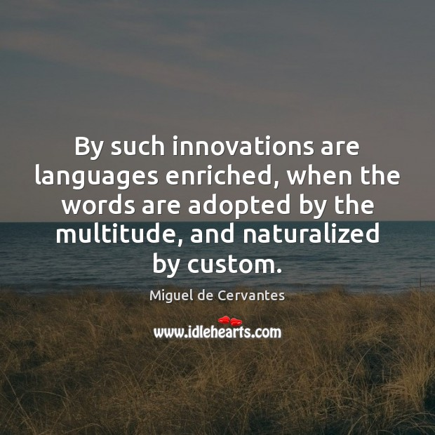 By such innovations are languages enriched, when the words are adopted by Miguel de Cervantes Picture Quote