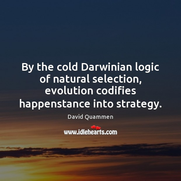 Image, By the cold Darwinian logic of natural selection, evolution codifies happenstance into