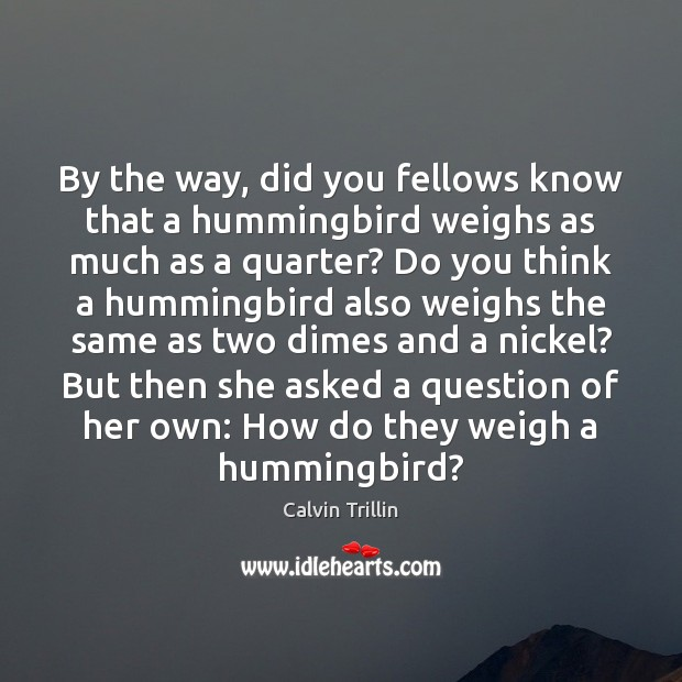 By the way, did you fellows know that a hummingbird weighs as Image