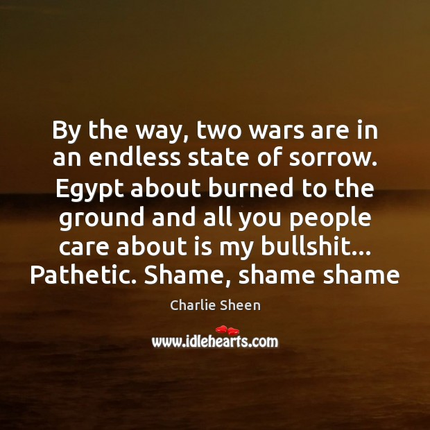 By the way, two wars are in an endless state of sorrow. Charlie Sheen Picture Quote