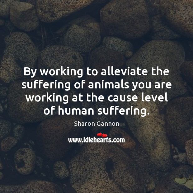 By working to alleviate the suffering of animals you are working at Sharon Gannon Picture Quote