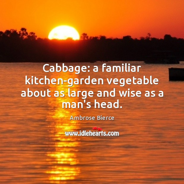 Image, Cabbage: a familiar kitchen-garden vegetable about as large and wise as a man's head.