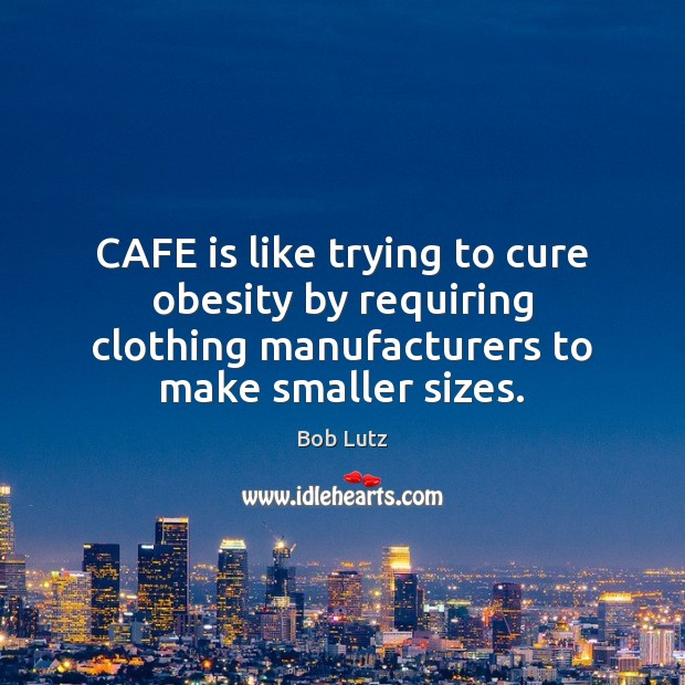 Image, CAFE is like trying to cure obesity by requiring clothing manufacturers to