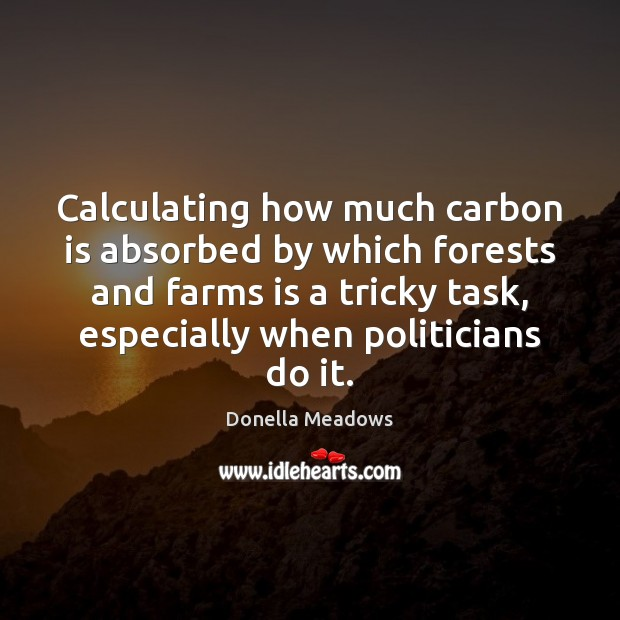 Calculating how much carbon is absorbed by which forests and farms is Donella Meadows Picture Quote