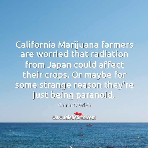 California Marijuana farmers are worried that radiation from Japan could affect their Image