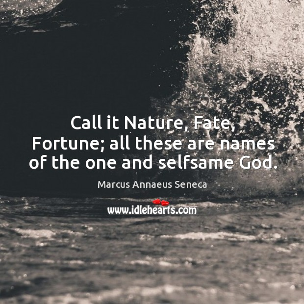 Call it nature, fate, fortune; all these are names of the one and selfsame God. Marcus Annaeus Seneca Picture Quote
