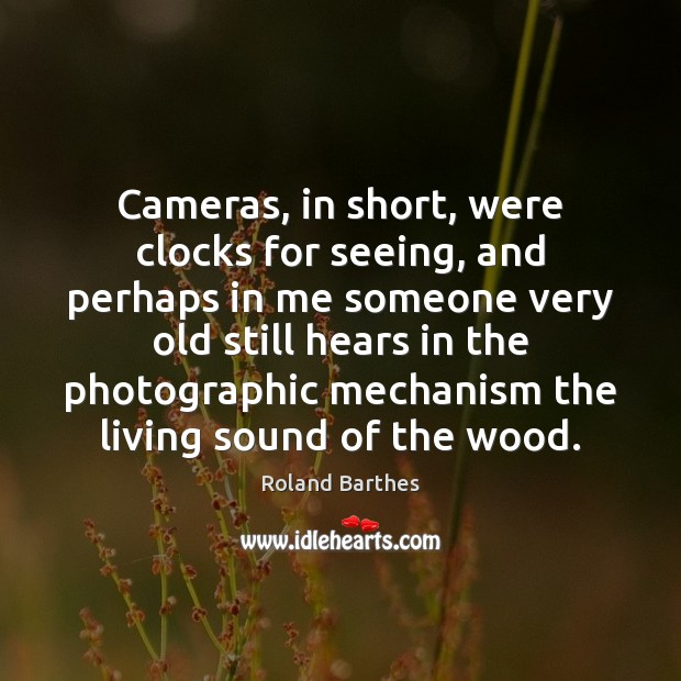 Cameras, in short, were clocks for seeing, and perhaps in me someone Roland Barthes Picture Quote