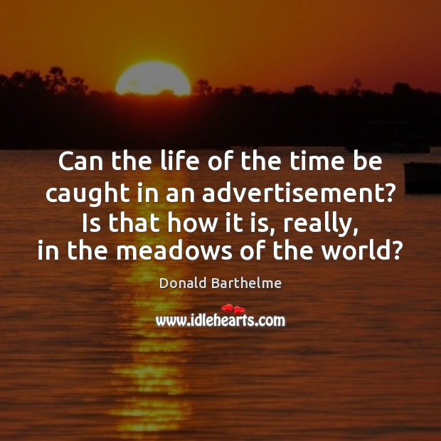 Can the life of the time be caught in an advertisement? Is Donald Barthelme Picture Quote