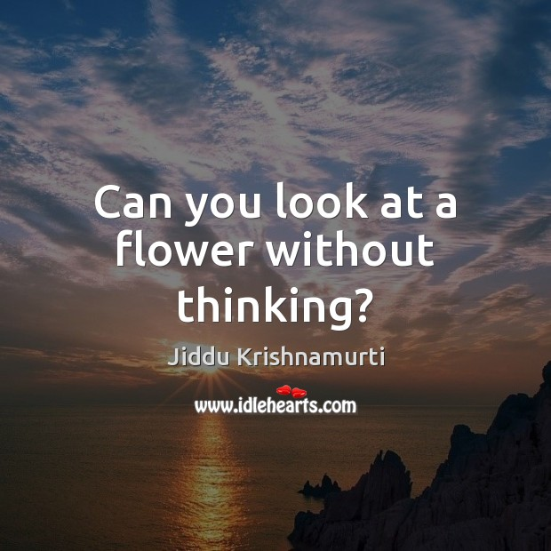 Can you look at a flower without thinking? Jiddu Krishnamurti Picture Quote