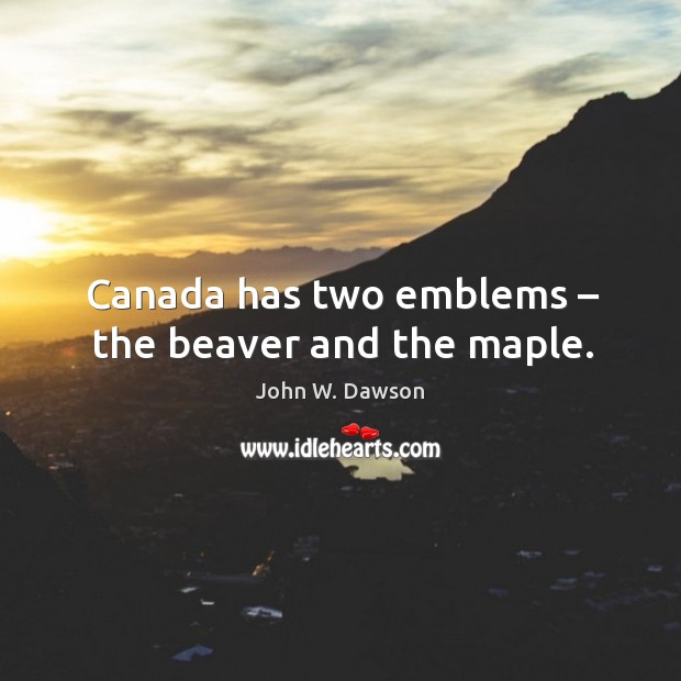 Canada has two emblems – the beaver and the maple. Image