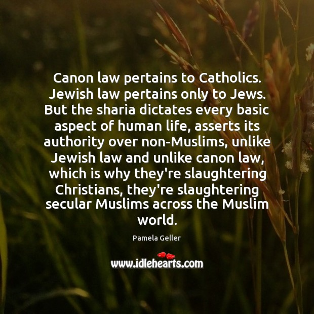 Canon law pertains to Catholics. Jewish law pertains only to Jews. But Image
