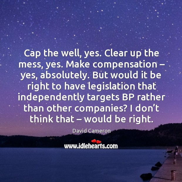 Image, Cap the well, yes. Clear up the mess, yes. Make compensation – yes, absolutely.
