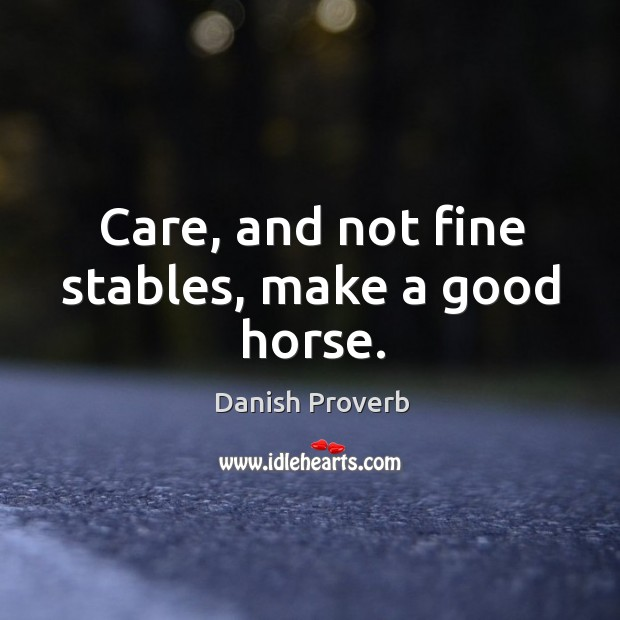 Image, Care, and not fine stables, make a good horse.