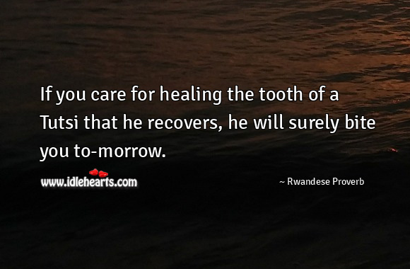 If you care for healing the tooth of a tutsi that he recovers, he will surely bite you to-morrow. Rwandese Proverbs Image
