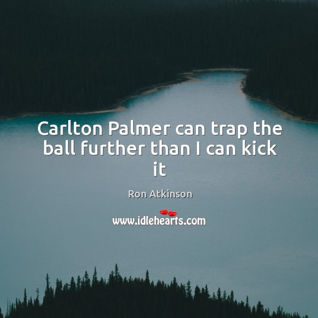 Carlton Palmer can trap the ball further than I can kick it Image