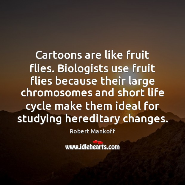 Cartoons are like fruit flies. Biologists use fruit flies because their large Robert Mankoff Picture Quote