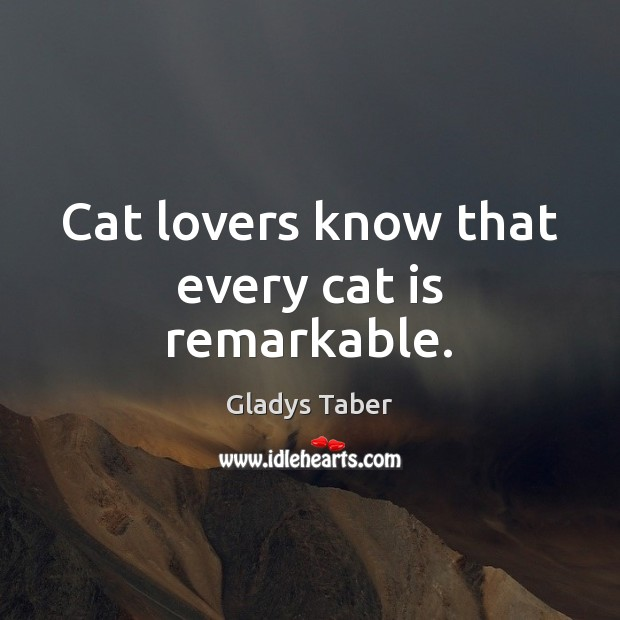 Cat lovers know that every cat is remarkable. Image