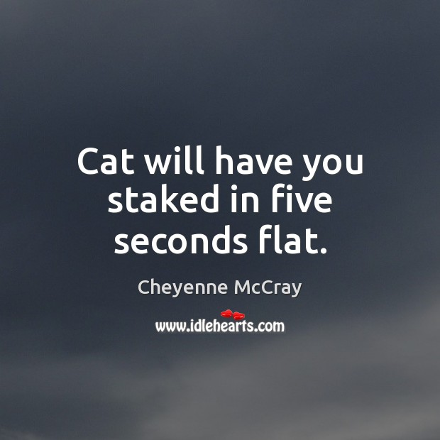 Image, Cat will have you staked in five seconds flat.