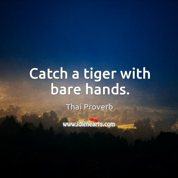 Image, Catch a tiger with bare hands.