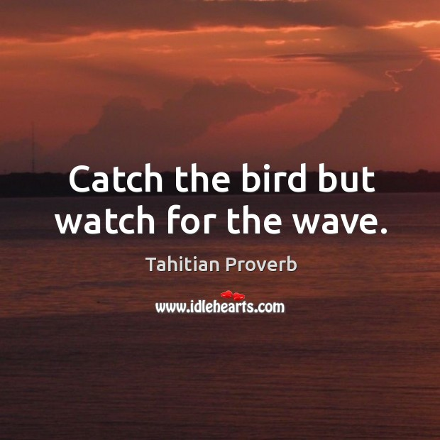 Catch the bird but watch for the wave. Tahitian Proverbs Image