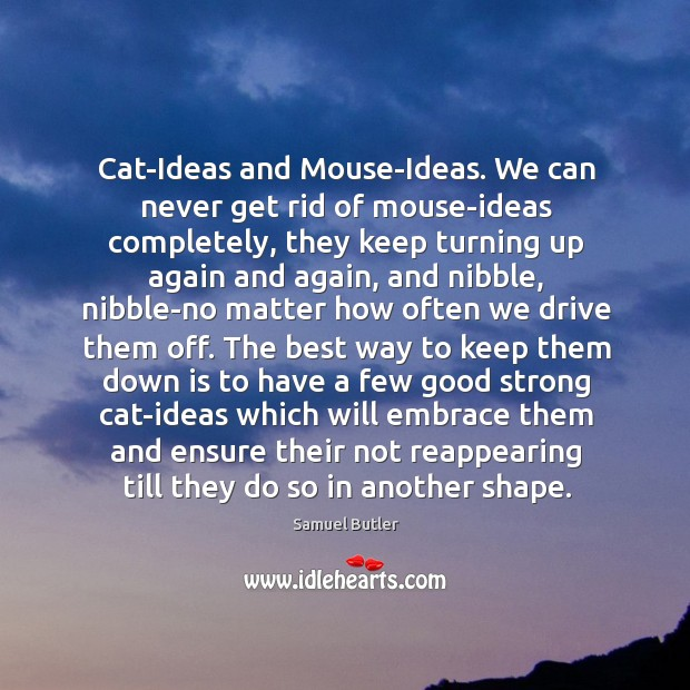 Image, Cat-Ideas and Mouse-Ideas. We can never get rid of mouse-ideas completely, they