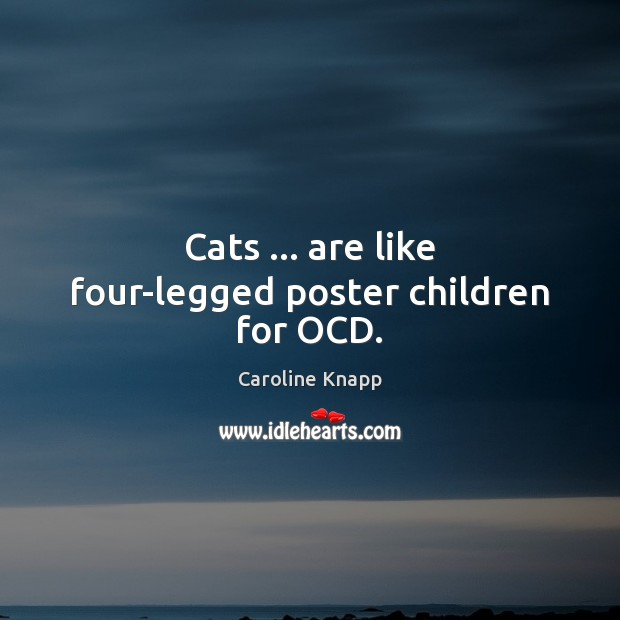 Cats … are like four-legged poster children for OCD. Caroline Knapp Picture Quote