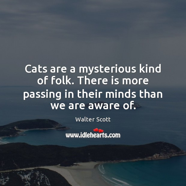 Cats are a mysterious kind of folk. There is more passing in Walter Scott Picture Quote
