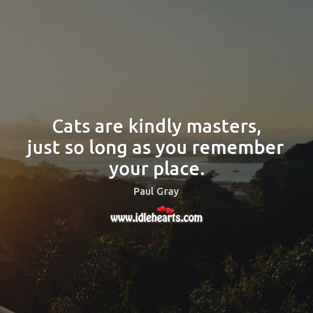 Cats are kindly masters, just so long as you remember your place. Image
