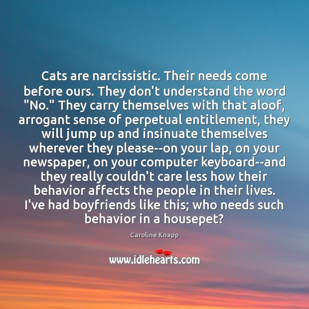Cats are narcissistic. Their needs come before ours. They don't understand the Caroline Knapp Picture Quote