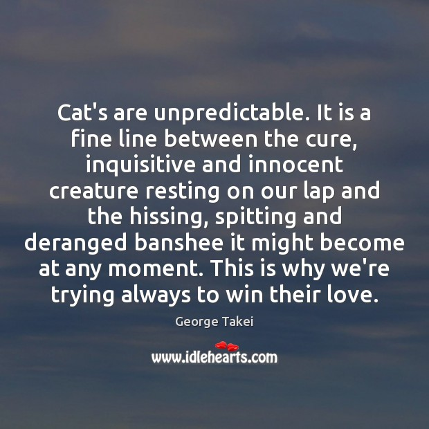 Image, Cat's are unpredictable. It is a fine line between the cure, inquisitive