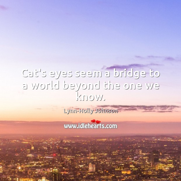 Image, Cat's eyes seem a bridge to a world beyond the one we know.