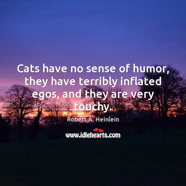 Cats have no sense of humor, they have terribly inflated egos, and they are very touchy. Image